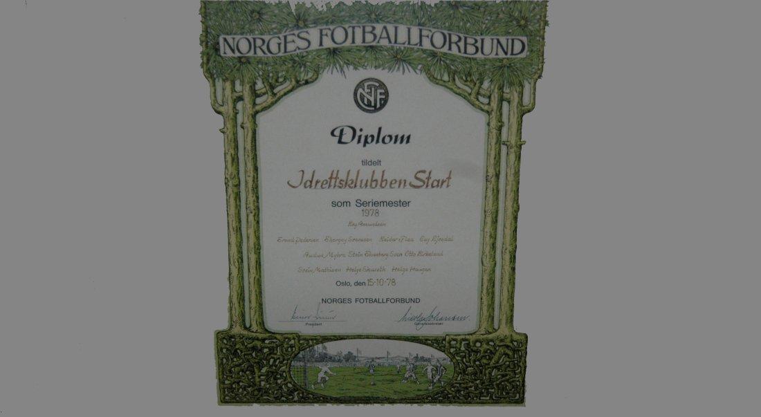 Diplom-78_graa